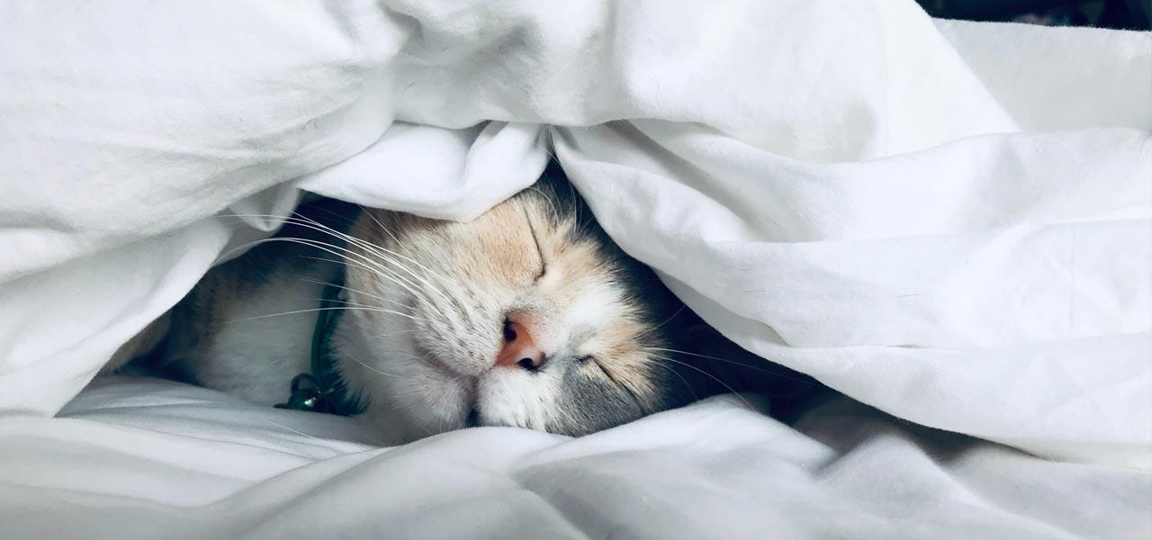 14 Tips για έναν Καλύτερο Ύπνο. 1